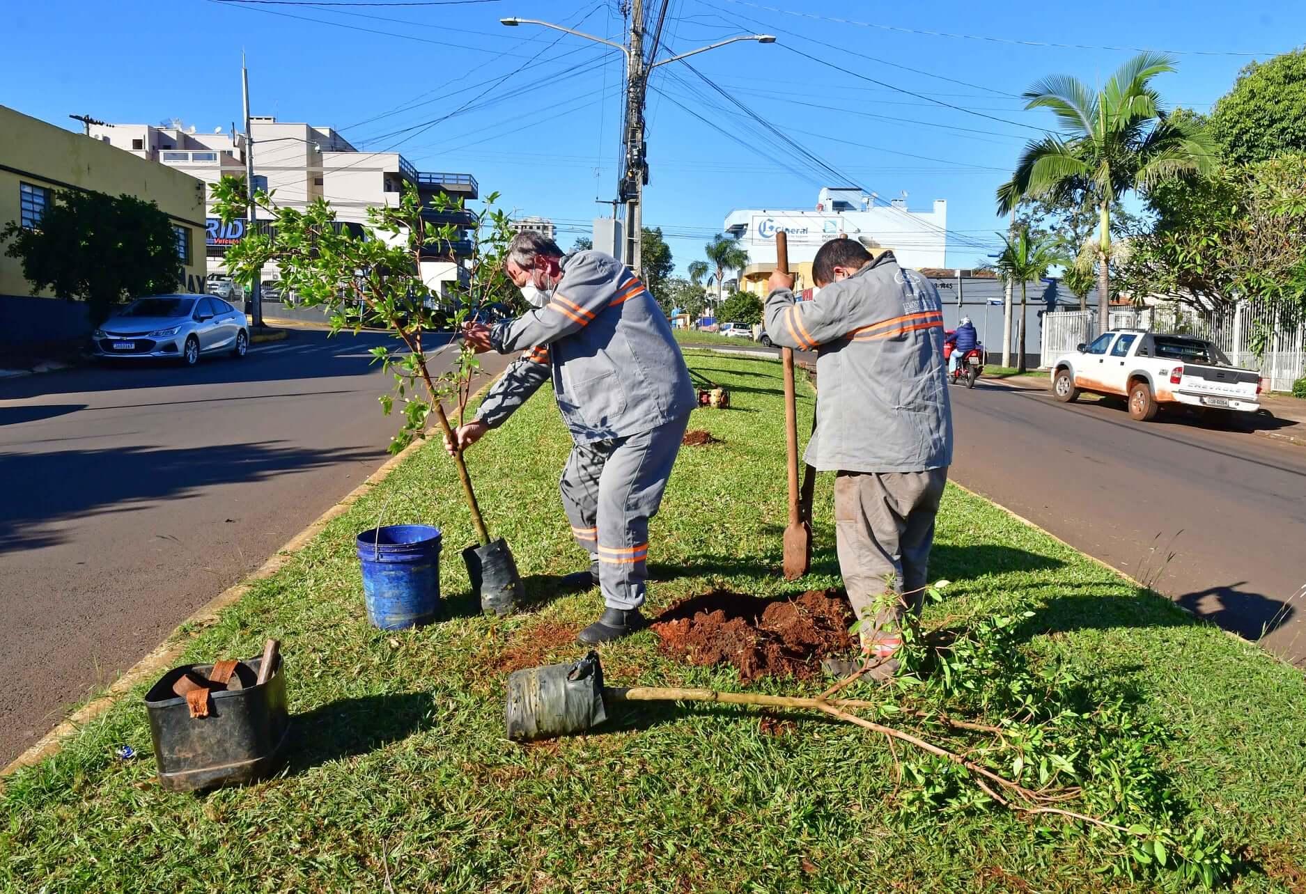 Plantio de 350 mudas marca retomada de projeto ambiental