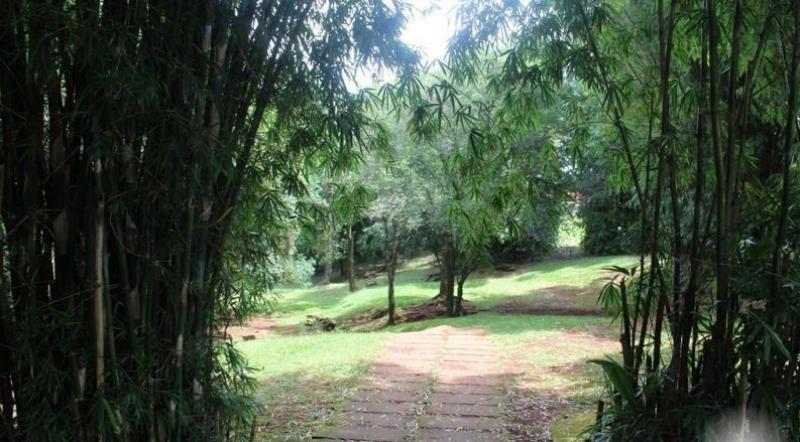 FONTE MISSIONEIRA