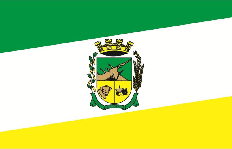 Bandeira e Brasão